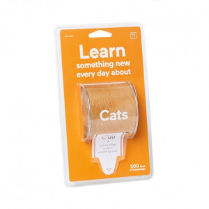 Learn Something New - Cats