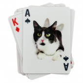 Playing Cards 3D - Cats