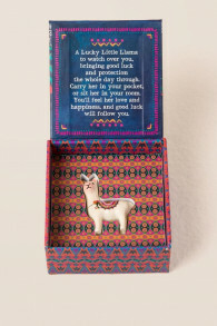 Lucky Little Llama in a Box